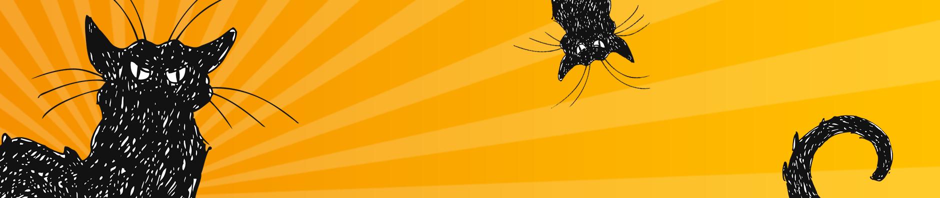 Föreningen Förvildade Katter